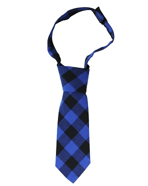 Blue Buffalo Plaid Neck Tie